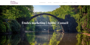 Agence Elysées Consulting